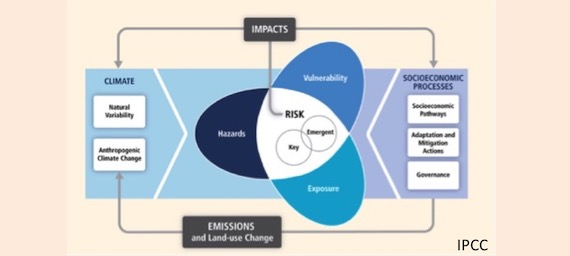 Read more about the article Assessment of coastal risks to climate change related impacts : scientific paper