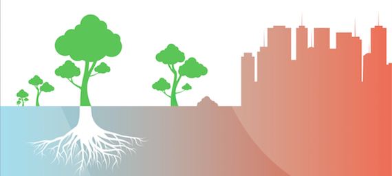 Read more about the article Third Report about the Climatic Change in Catalonia (TICCC)