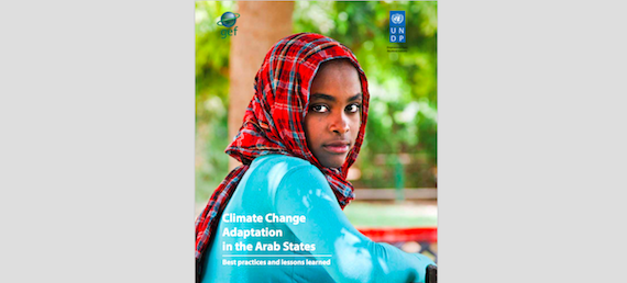 """Read more about the article """"Climate Change Adaptation in the Arab States: Best Practices and Lessons Learned"""" report"""
