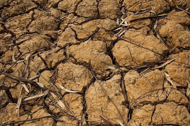 Read more about the article Extreme dry spells over the Mediterranean Basin during the wet season (article)