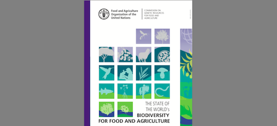The State of the World's Biodiversity for Food and Agriculture (FAO report)