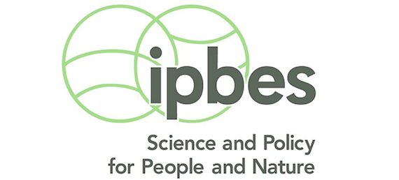 IPBES Global Assessment Report on Biodiversity and Ecosystem Services