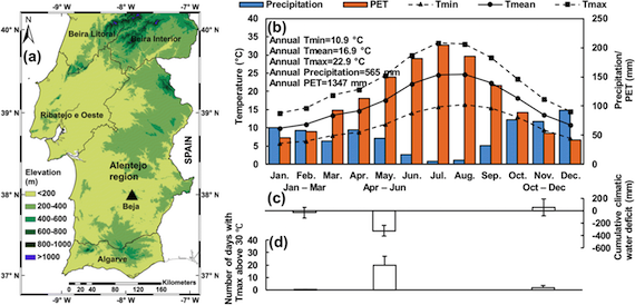 Effects of climate change and adaptation options on winter wheat yield-Portugal (article)
