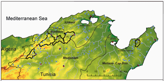 Read more about the article Sensitivity of discharge projections to potential evapotranspiration estimation in Northern Tunisia (article)