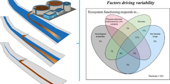 Combined effects of urban pollution and hydrological stress on ecosystem functions of Mediterranean streams (article)