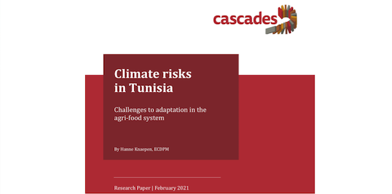Read more about the article Climate risks in Tunisia: Challenges to adaptation in the agri-food system (article)