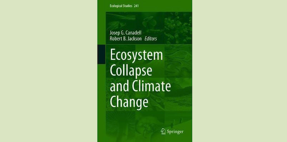 Read more about the article Sliding toward the collapse of Mediterranean coastal marine rocky ecosystems (book chapter)