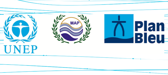 Good Environmental Status of Mediterranean marine waters; Plan Bleu report