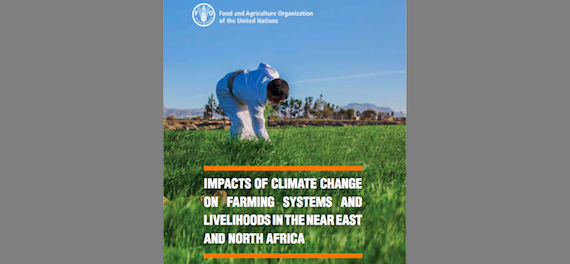 Climate change and farming systems, Near East and North Africa  (FAO report)