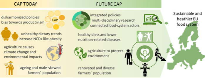 More sustainable and healthier food systems in Europe (scientific article)