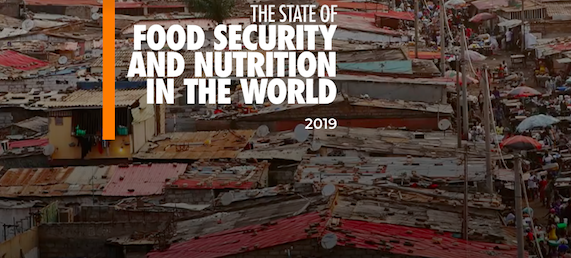 The state of food security and nutrition in the world (report)