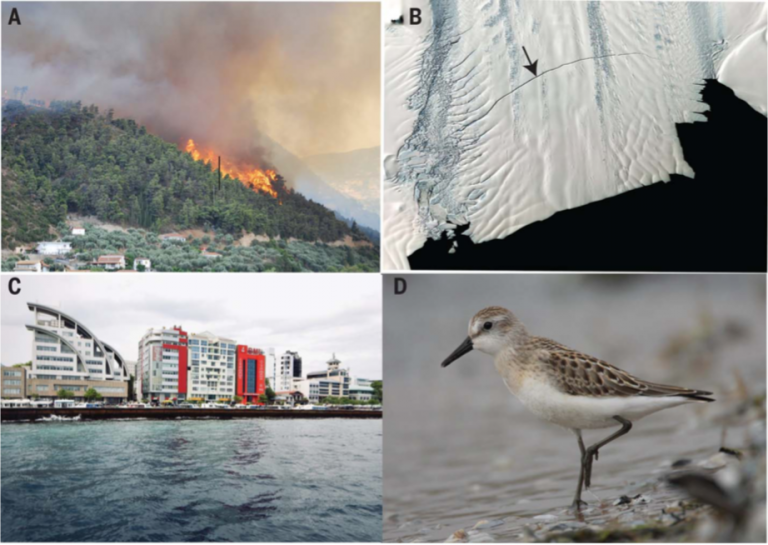 Read more about the article The human imperative of stabilizing global climate change at 1.5°C (article)