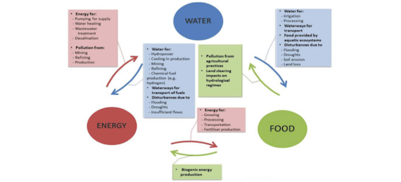 Water food energy