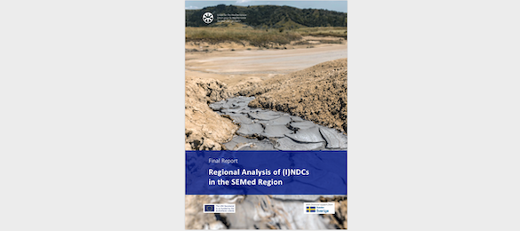 Regional analysis of the (I)NDCs in the SEMed Region (report)