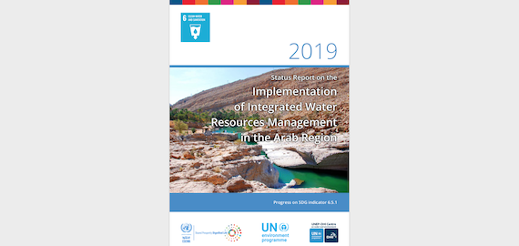 Status Report on the Implementation of Integrated Water Resources Management in the Arab Region