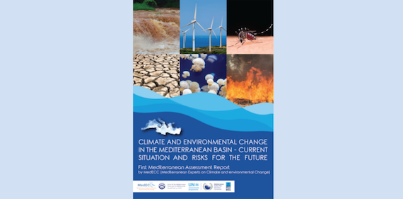 First Mediterranean Assessment Report