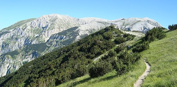 Read more about the article Contrasting multitaxon responses to climate change in Mediterranean mountains (article)